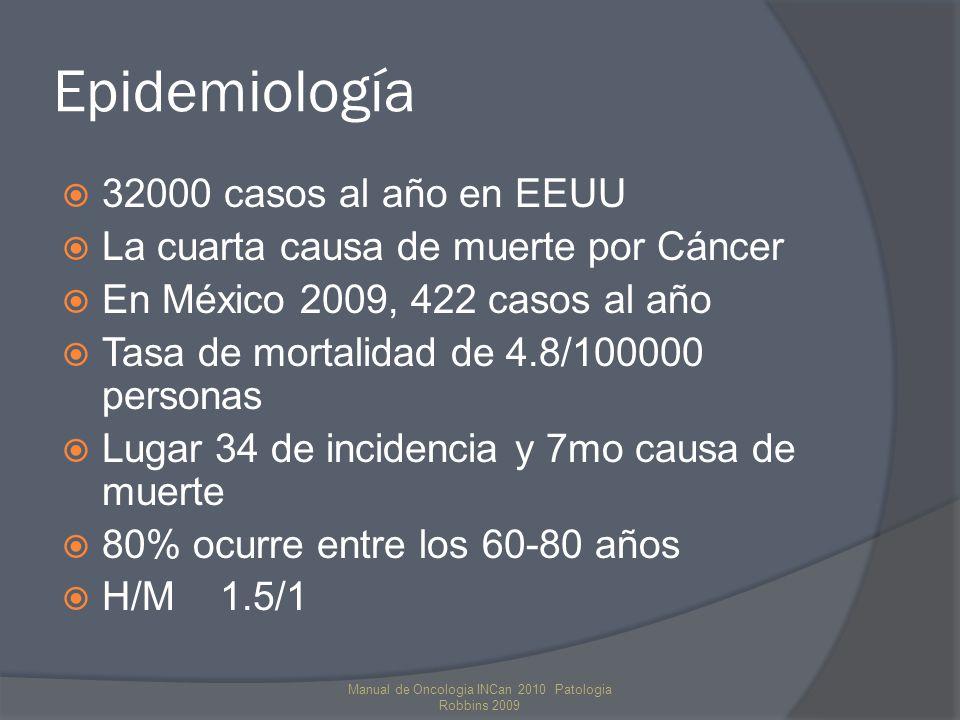 Epidemiología 32000 casos al año en EEUU La cuarta causa de muerte por Cáncer En México 2009, 422 casos al año Tasa de mortalidad de 4.8/100000 personas Lugar 34 de incidencia y 7mo causa de muerte 80% ocurre entre los 60-80 años H/M 1.5/1 Manual de Oncologia INCan 2010 Patologia Robbins 2009