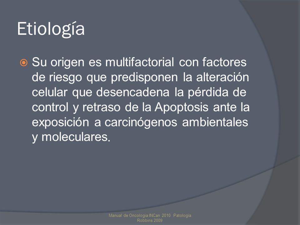 Etiología Su origen es multifactorial con factores de riesgo que predisponen la alteración celular que desencadena la pérdida de control y retraso de la Apoptosis ante la exposición a carcinógenos ambientales y moleculares.
