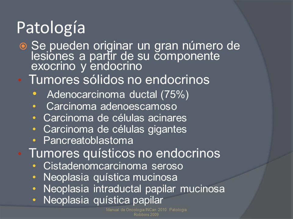 PATOGENIA Cáncer de Páncreas Epitelio Normal NlP 1A NIP 1B NIP 2 NIP 3 Adenoca P Invasivo NIP: neoplasia intraepitelial pancreática Gen K-ras (> 90%) Gen supres P16 (95%) Gen Supr P53 (75%) DPC4 (50%) BRCA2 Activación Inactivación Modelo Secuencial de carcinogénesis Alteraciones genéticas Manual de Oncologia INCan 2010 Patologia Robbins 2009