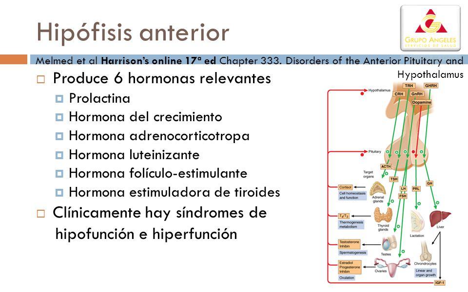 Síndromes de hiperfunción