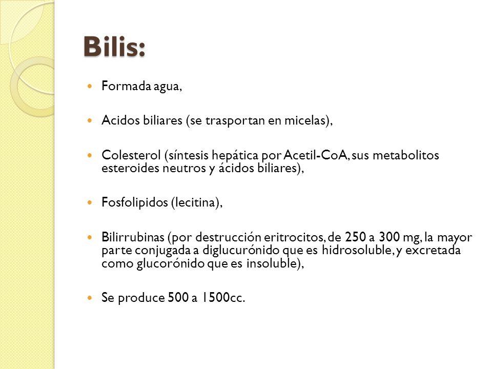 Bilis: Formada agua, Acidos biliares (se trasportan en micelas), Colesterol (síntesis hepática por Acetil-CoA, sus metabolitos esteroides neutros y ácidos biliares), Fosfolipidos (lecitina), Bilirrubinas (por destrucción eritrocitos, de 250 a 300 mg, la mayor parte conjugada a diglucurónido que es hidrosoluble, y excretada como glucorónido que es insoluble), Se produce 500 a 1500cc.