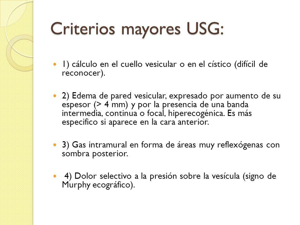 Criterios mayores USG: 1) cálculo en el cuello vesicular o en el cístico (difícil de reconocer).