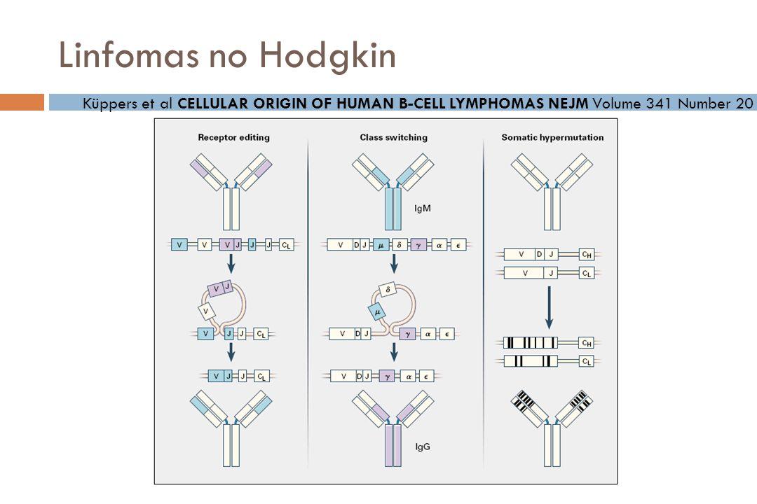 Linfomas no Hodgkin Küppers et al CELLULAR ORIGIN OF HUMAN B-CELL LYMPHOMAS NEJM Volume 341 Number 20