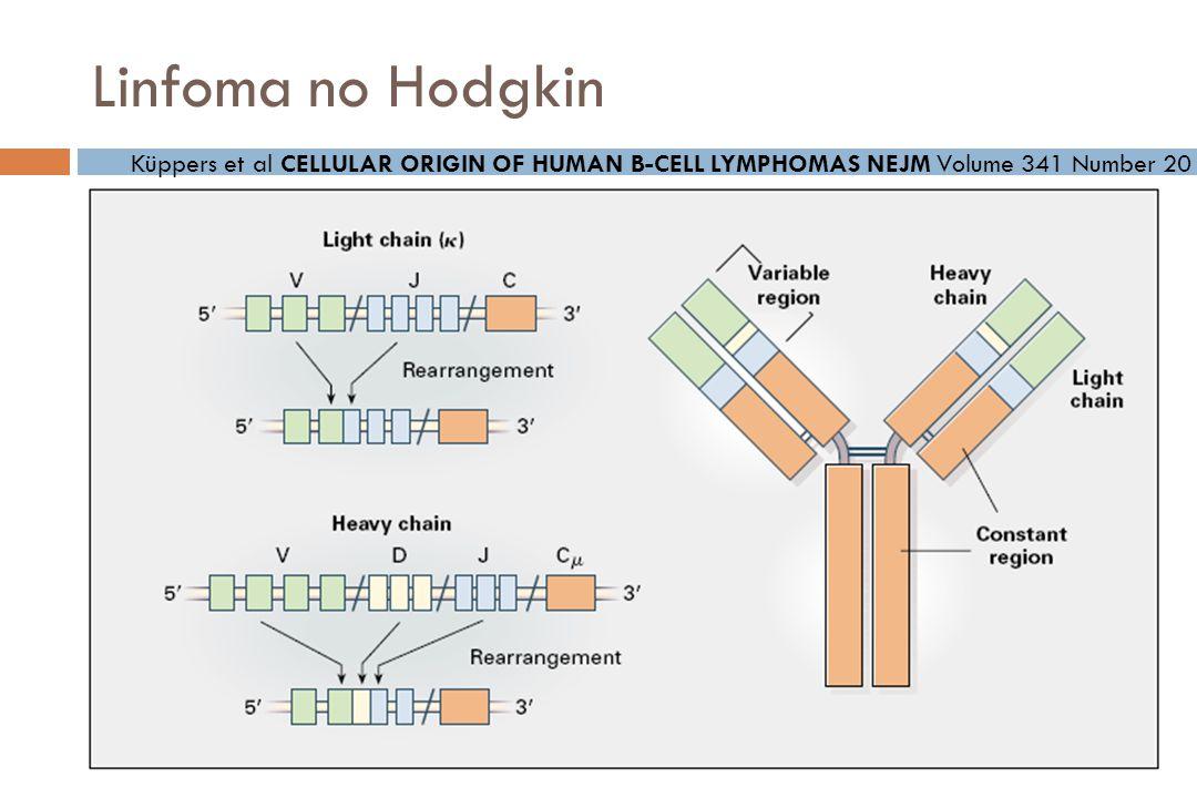 Linfoma no Hodgkin Küppers et al CELLULAR ORIGIN OF HUMAN B-CELL LYMPHOMAS NEJM Volume 341 Number 20
