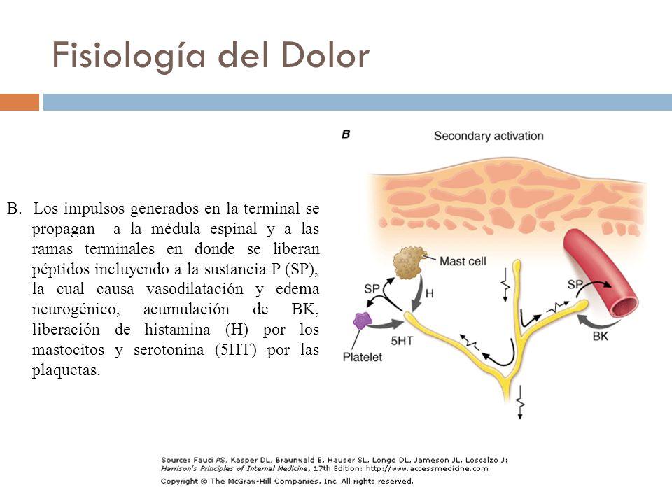 Fisiología del Dolor B.