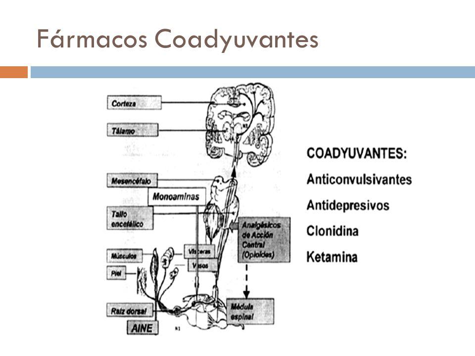 Fármacos Coadyuvantes