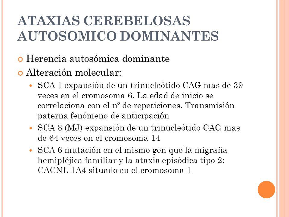 ATAXIAS CEREBELOSAS AUTOSOMICO DOMINANTES Herencia autosómica dominante Alteración molecular: SCA 1 expansión de un trinucleótido CAG mas de 39 veces en el cromosoma 6.