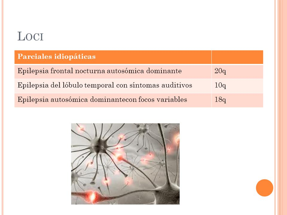L OCI Parciales idiopáticas Epilepsia frontal nocturna autosómica dominante20q Epilepsia del lóbulo temporal con síntomas auditivos10q Epilepsia autosómica dominantecon focos variables18q