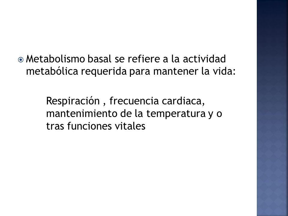 Metabolismo basal se refiere a la actividad metabólica requerida para mantener la vida: Respiración, frecuencia cardiaca, mantenimiento de la temperatura y o tras funciones vitales