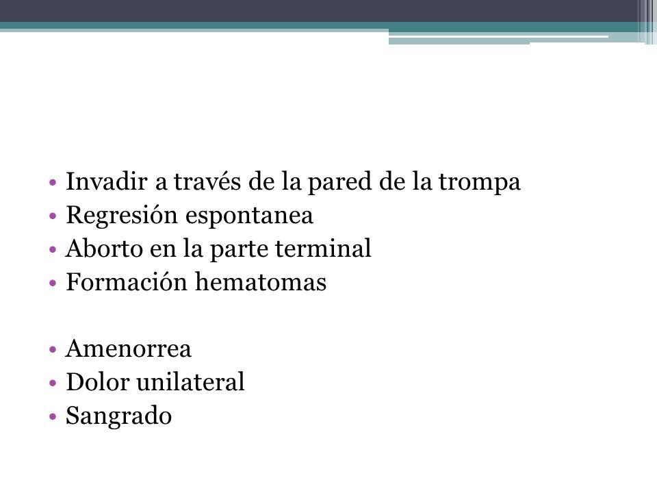 Invadir a través de la pared de la trompa Regresión espontanea Aborto en la parte terminal Formación hematomas Amenorrea Dolor unilateral Sangrado