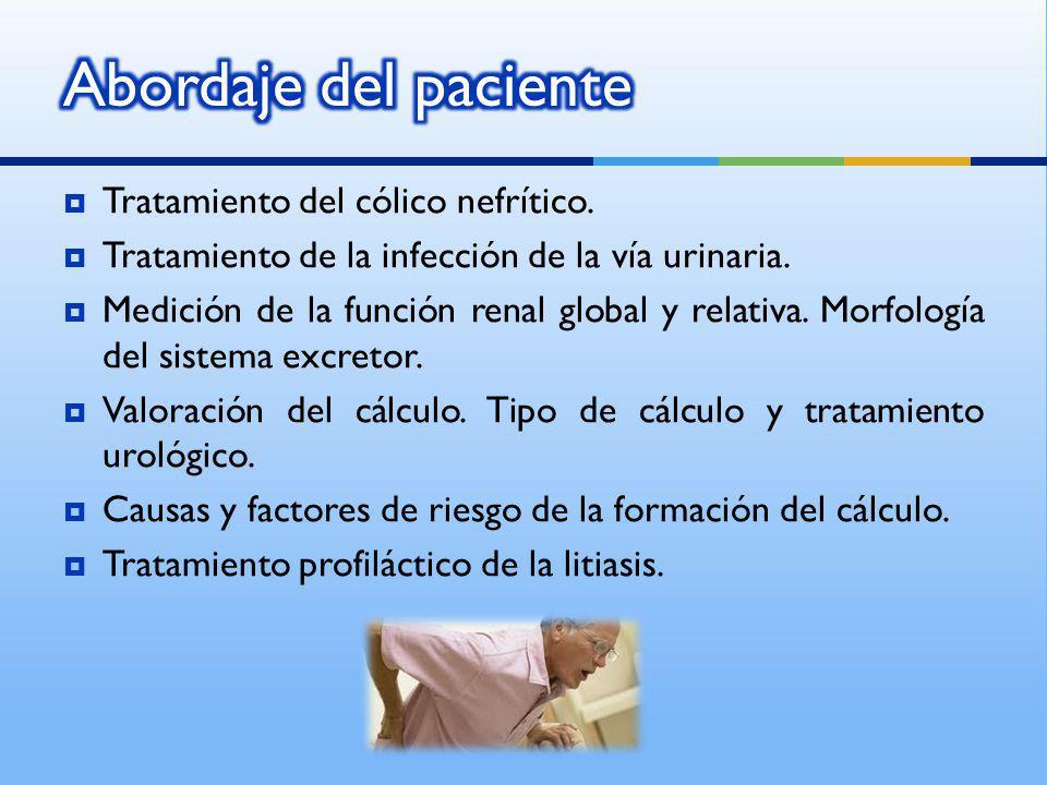 Tratamiento del cólico nefrítico. Tratamiento de la infección de la vía urinaria. Medición de la función renal global y relativa. Morfología del siste