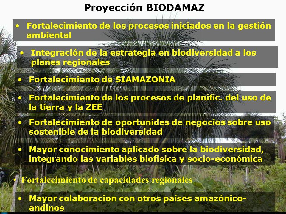 Mayor colaboracion con otros países amazónico- andinos Proyección BIODAMAZ Fortalecimiento de SIAMAZONIA Fortalecimiento de los procesos de planific.
