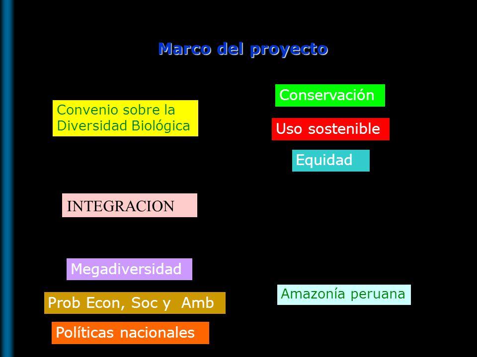 Contar con instrumentos de gestion: Estrategias y planes de acción sobre la diversidad biologica Información sobre la diversidad biologica accesible Mayor conocimiento sobre la diversidad biologica Importancia de BIODAMAZ Oportunidades para el uso sostenible de la biodiversidad Fortalecimiento de la integración con países amazónicos andinos BIODAMAZ Perú-Finlandia Fase I: 1999-2002 Fase II: 2003-2007