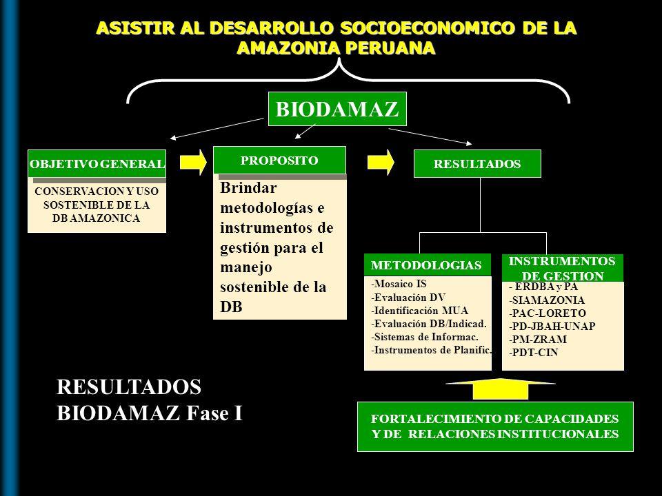 Objetivos del Proyecto BIODAMAZ Objetivo global: Conservación y uso sostenible de la diversidad biológica amazónica Proyecto BIODAMAZ Fase I: Propósito: Brindar metodologías de trabajo para el manejo sostenible de la DBA Proyecto BIODAMAZ Fase II: Objetivo global: Conservación y uso sostenible de la diversidad biológica amazónica para promover el desarrollo sostenible y el alivio a la pobreza Propósito: Desarrollo de capacidades descentralizadas e instrumentos de gestión y metodologías de investigación para el manejo sostenible de la diversidad biológica