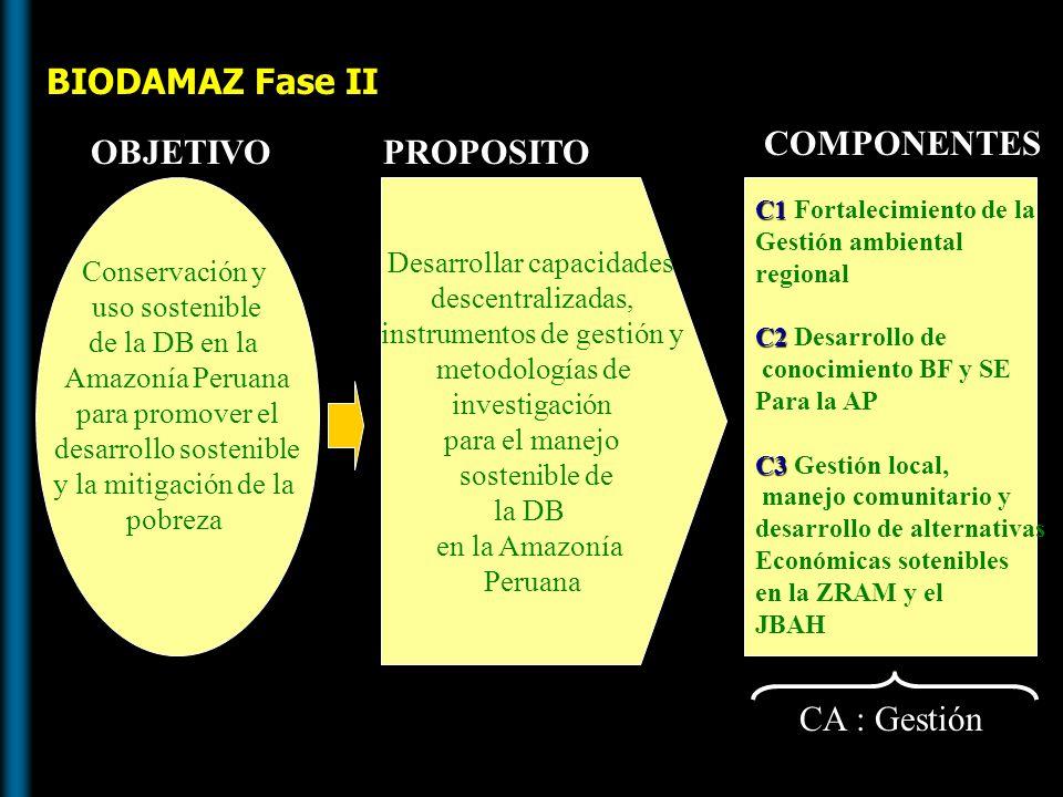 PROPOSITO Desarrollar capacidades descentralizadas, instrumentos de gestión y metodología de investigación para el manejo sostenible de la DB CA Gestión C1 Fortalecimiento de la gestión ambiental regional C2 Desarrollo de conocimiento sobre la Amazonía Peruana C3 Gestión local, manejo comunitario y desarr.
