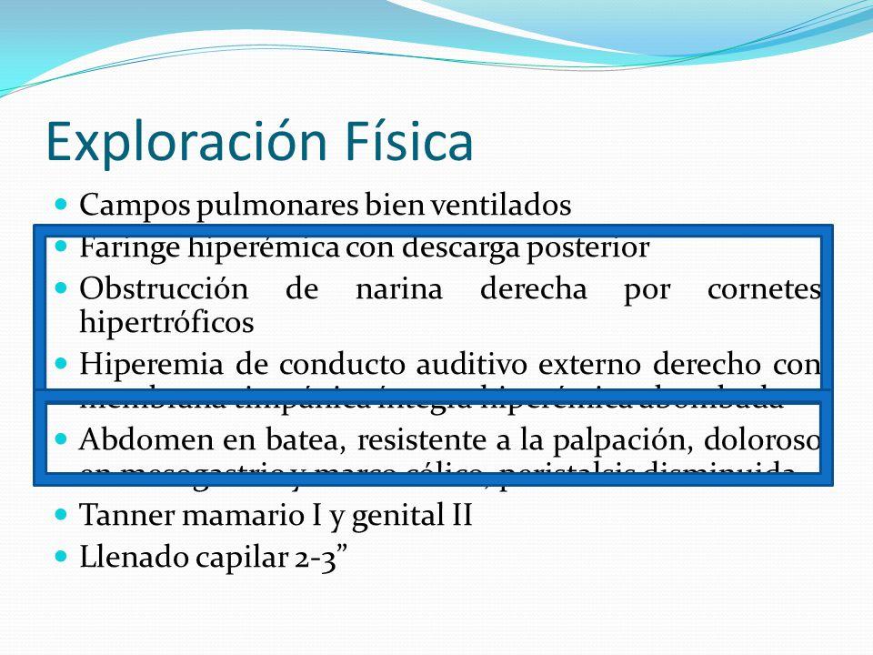 Exploración Física Campos pulmonares bien ventilados Faringe hiperémica con descarga posterior Obstrucción de narina derecha por cornetes hipertrófico