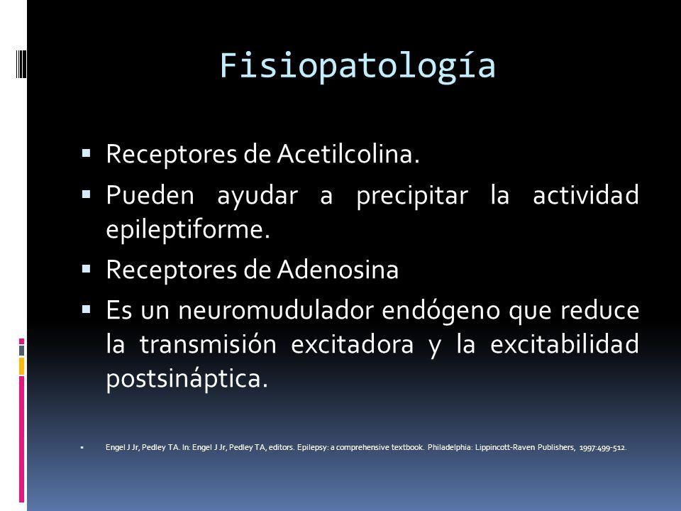 Fisiopatología Receptores de Acetilcolina. Pueden ayudar a precipitar la actividad epileptiforme. Receptores de Adenosina Es un neuromudulador endógen