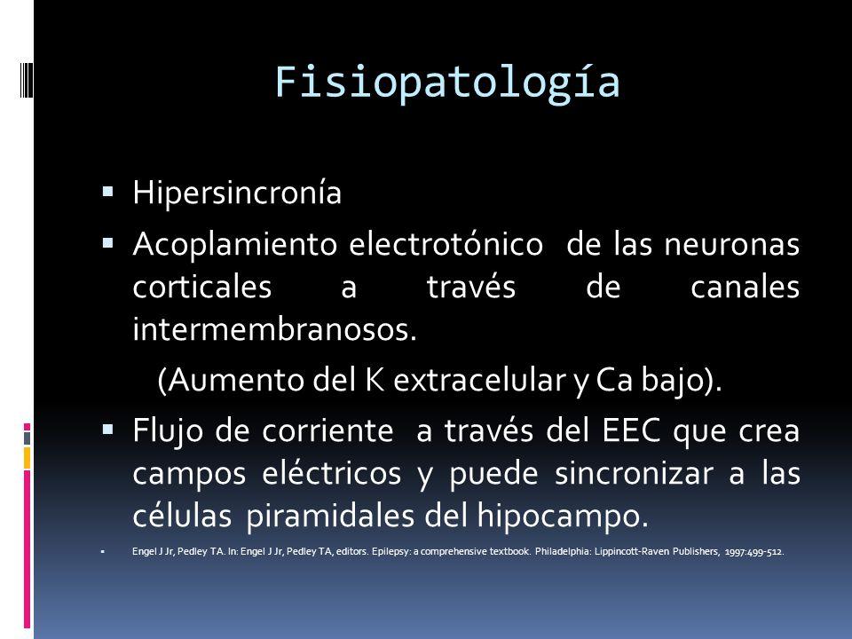 Fisiopatología Hipersincronía Acoplamiento electrotónico de las neuronas corticales a través de canales intermembranosos. (Aumento del K extracelular