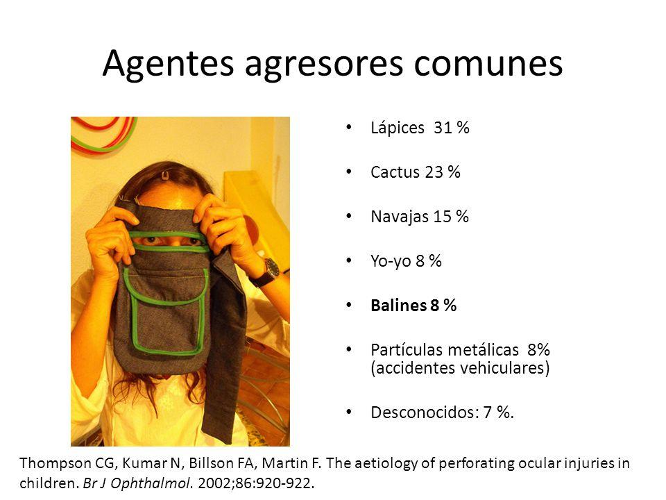 Agentes agresores comunes Lápices 31 % Cactus 23 % Navajas 15 % Yo-yo 8 % Balines 8 % Partículas metálicas 8% (accidentes vehiculares) Desconocidos: 7 %.