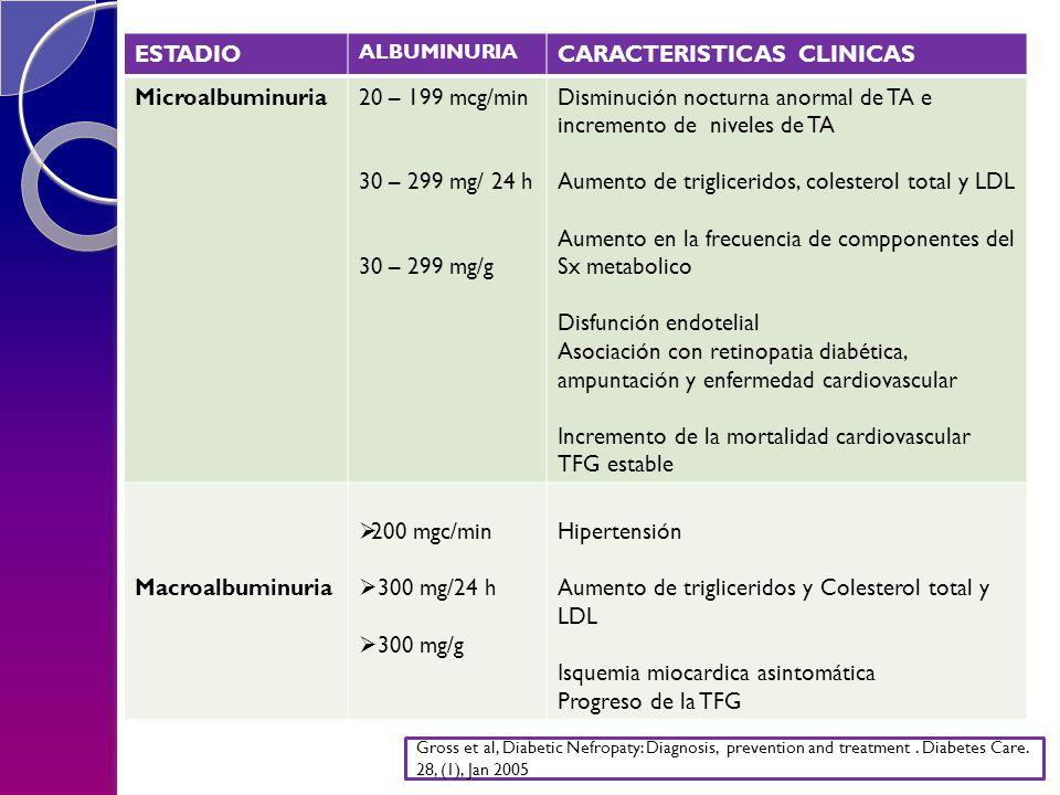 NEFROPATIA DIABÉTICA ESTADIO ALBUMINURIA CARACTERISTICAS CLINICAS Microalbuminuria20 – 199 mcg/min 30 – 299 mg/ 24 h 30 – 299 mg/g Disminución nocturna anormal de TA e incremento de niveles de TA Aumento de trigliceridos, colesterol total y LDL Aumento en la frecuencia de compponentes del Sx metabolico Disfunción endotelial Asociación con retinopatia diabética, ampuntación y enfermedad cardiovascular Incremento de la mortalidad cardiovascular TFG estable Macroalbuminuria 200 mgc/min 300 mg/24 h 300 mg/g Hipertensión Aumento de trigliceridos y Colesterol total y LDL Isquemia miocardica asintomática Progreso de la TFG Gross et al, Diabetic Nefropaty: Diagnosis, prevention and treatment.