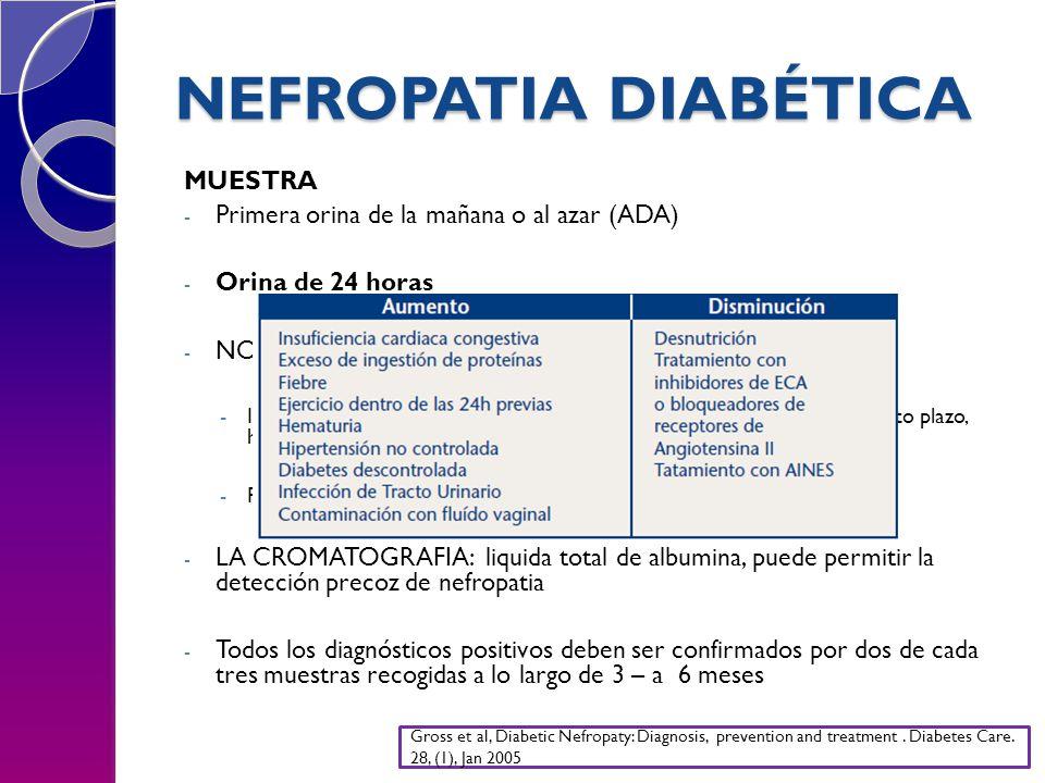 NEFROPATIA DIABÉTICA MUESTRA - Primera orina de la mañana o al azar (ADA) - Orina de 24 horas - NO REALIZARSE EN SITUACIONES QUE AUMENTAN AEU: -IVU, hematuria, fiebre, ejercicio vigoroso, hiperglucemia pronunciada a corto plazo, hipertensión no controalada e ICC.