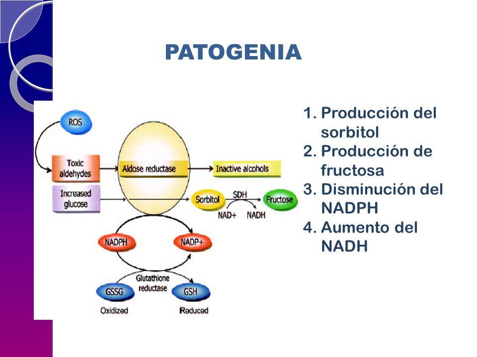 1.Producción del sorbitol 2.Producción de fructosa 3.Disminución del NADPH 4.Aumento del NADH PATOGENIA