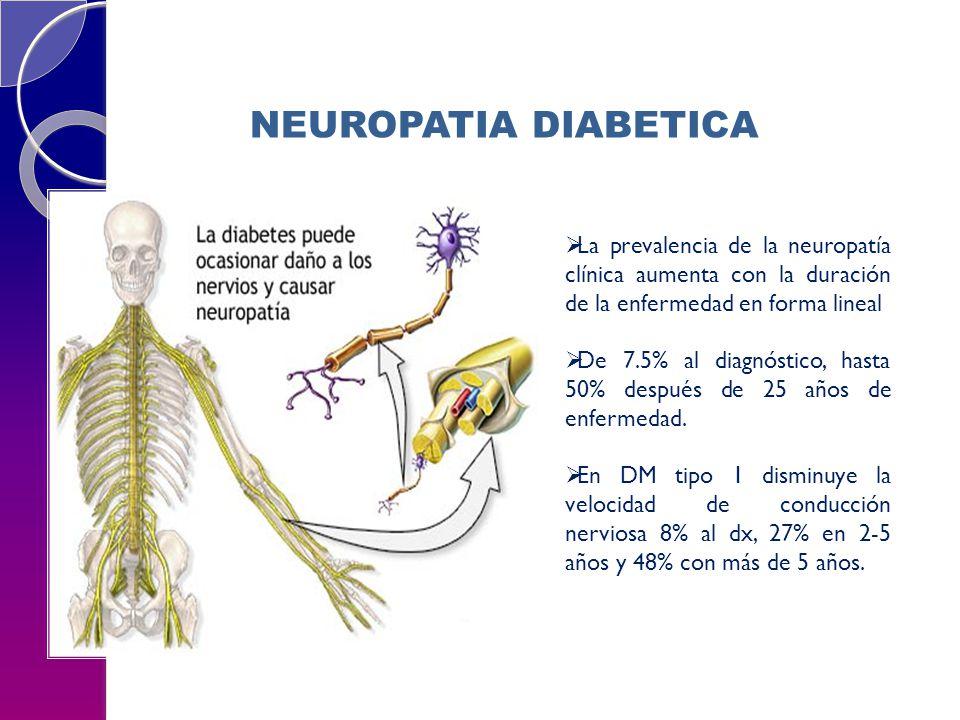 La prevalencia de la neuropatía clínica aumenta con la duración de la enfermedad en forma lineal De 7.5% al diagnóstico, hasta 50% después de 25 años de enfermedad.