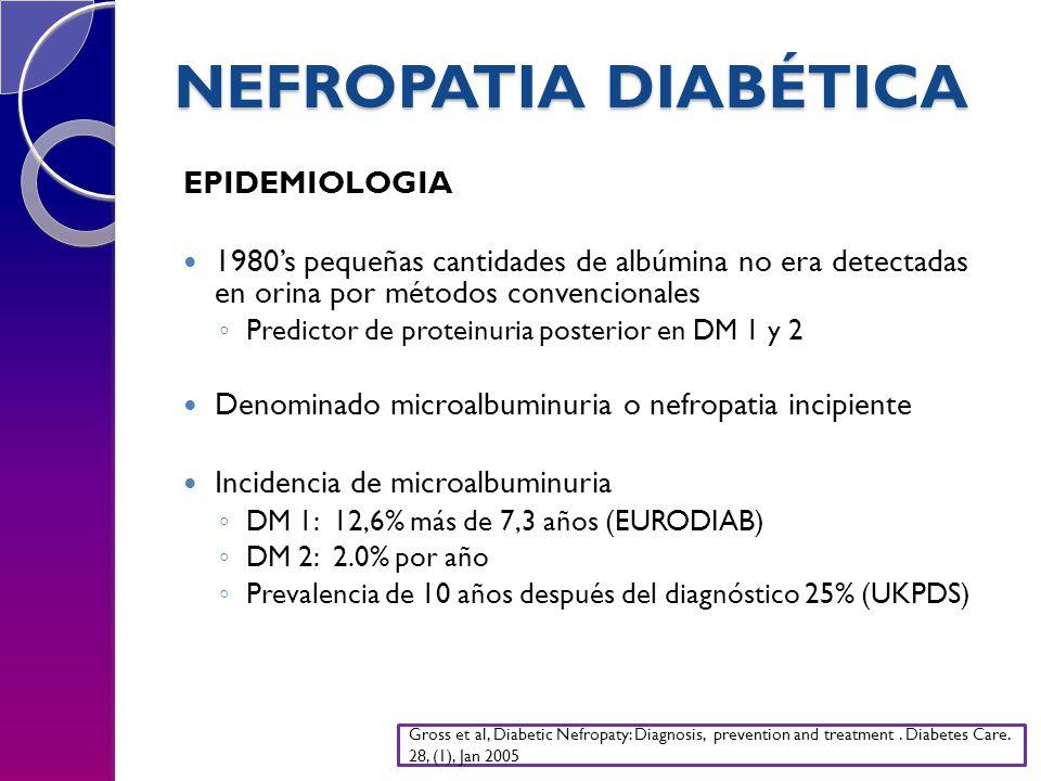NEFROPATIA DIABÉTICA EPIDEMIOLOGIA 1980s pequeñas cantidades de albúmina no era detectadas en orina por métodos convencionales Predictor de proteinuria posterior en DM 1 y 2 Denominado microalbuminuria o nefropatia incipiente Incidencia de microalbuminuria DM 1: 12,6% más de 7,3 años (EURODIAB) DM 2: 2.0% por año Prevalencia de 10 años después del diagnóstico 25% (UKPDS) Gross et al, Diabetic Nefropaty: Diagnosis, prevention and treatment.