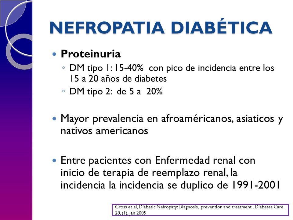 NEFROPATIA DIABÉTICA Proteinuria DM tipo 1: 15-40% con pico de incidencia entre los 15 a 20 años de diabetes DM tipo 2: de 5 a 20% Mayor prevalencia en afroaméricanos, asiaticos y nativos americanos Entre pacientes con Enfermedad renal con inicio de terapia de reemplazo renal, la incidencia la incidencia se duplico de 1991-2001 Gross et al, Diabetic Nefropaty: Diagnosis, prevention and treatment.
