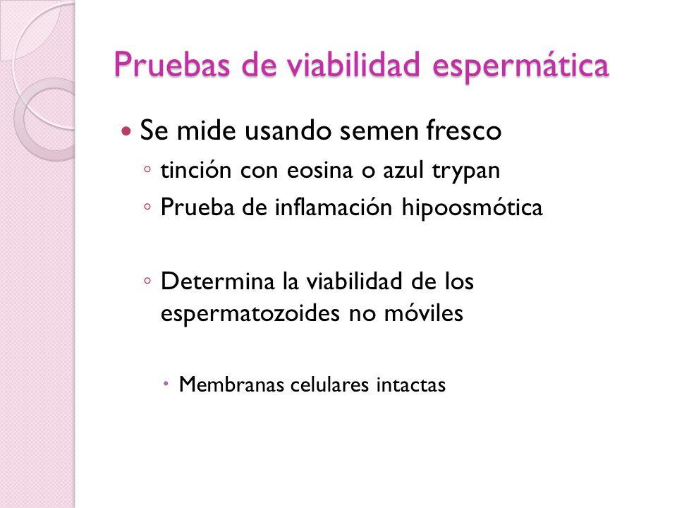 Pruebas de Interacción moco cervical - esperma Prueba post – coital Examen del moco cervical antes de la ovulación y unas horas después del coito Identificación de espermatozoides móviles en el moco