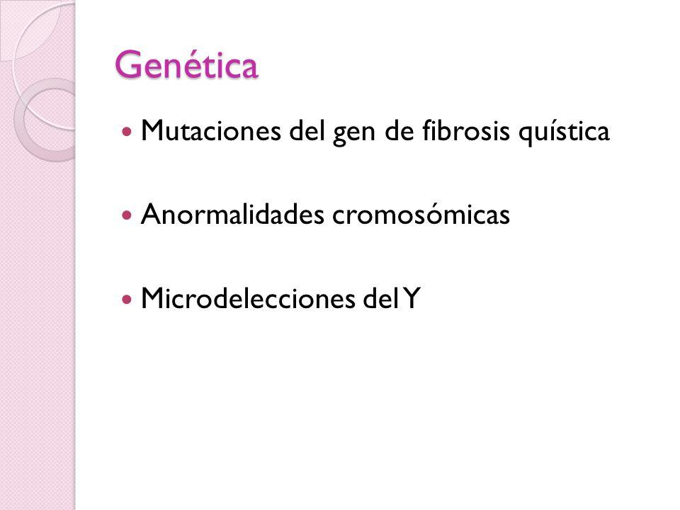 Mutaciones del gen de fibrosis quística Localizado en cromosoma 7 Asociado a agenesia bilateral congénita de vasos deferentes