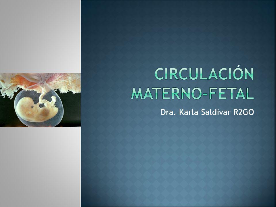 Principio: captación de elementos nutritivos por difusión A medida que el embrión aumenta de tamaño, la captación de nutrientes se torna insuficiente Mecanismo de transferencia directa de nutrientes de la circulación materna al feto