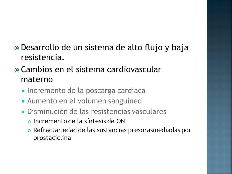 Desarrollo de un sistema de alto flujo y baja resistencia. Cambios en el sistema cardiovascular materno Incremento de la poscarga cardiaca Aumento en