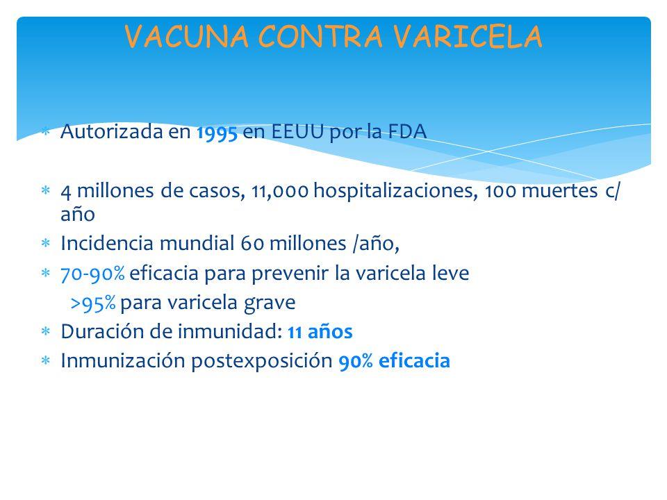 VACUNA CONTRA VARICELA Autorizada en 1995 en EEUU por la FDA 4 millones de casos, 11,000 hospitalizaciones, 100 muertes c/ año Incidencia mundial 60 m
