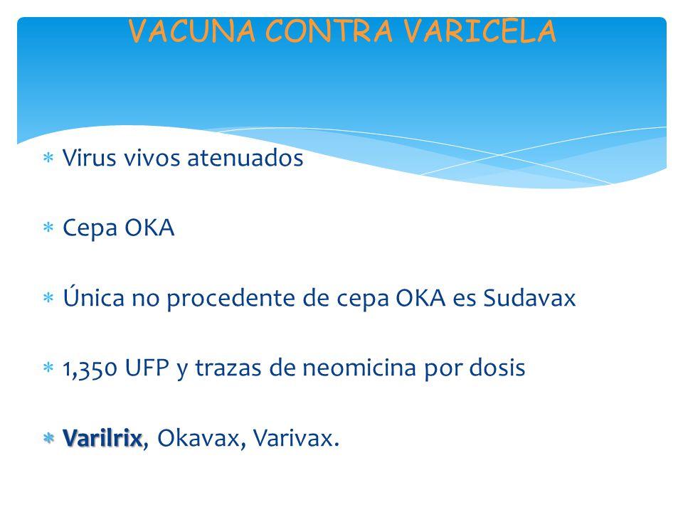 VACUNA CONTRA VARICELA Virus vivos atenuados Cepa OKA Única no procedente de cepa OKA es Sudavax 1,350 UFP y trazas de neomicina por dosis Varilrix Varilrix, Okavax, Varivax.
