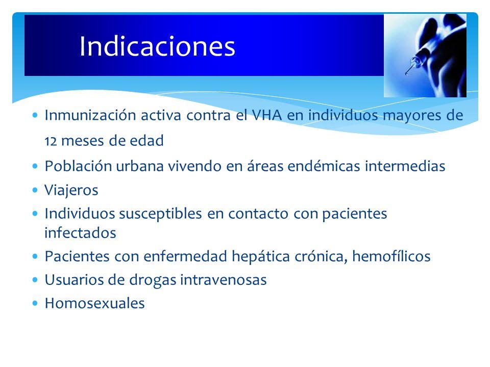 Indicaciones Inmunización activa contra el VHA en individuos mayores de 12 meses de edad Población urbana vivendo en áreas endémicas intermedias Viajeros Individuos susceptibles en contacto con pacientes infectados Pacientes con enfermedad hepática crónica, hemofílicos Usuarios de drogas intravenosas Homosexuales