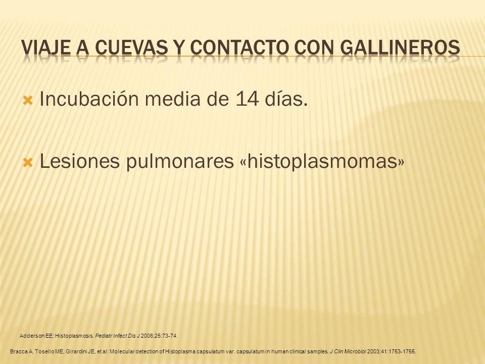 Incubación media de 14 días. Lesiones pulmonares «histoplasmomas» Adderson EE: Histoplasmosis. Pediatr Infect Dis J 2006;25:73-74. Bracca A, Tosello M