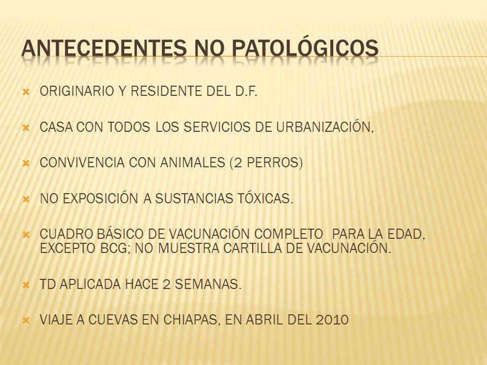 ORIGINARIO Y RESIDENTE DEL D.F. CASA CON TODOS LOS SERVICIOS DE URBANIZACIÓN, CONVIVENCIA CON ANIMALES (2 PERROS) NO EXPOSICIÓN A SUSTANCIAS TÓXICAS.
