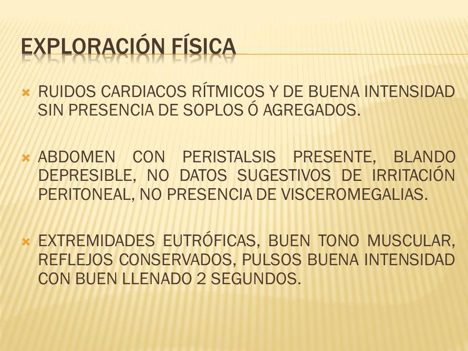 RUIDOS CARDIACOS RÍTMICOS Y DE BUENA INTENSIDAD SIN PRESENCIA DE SOPLOS Ó AGREGADOS. ABDOMEN CON PERISTALSIS PRESENTE, BLANDO DEPRESIBLE, NO DATOS SUG