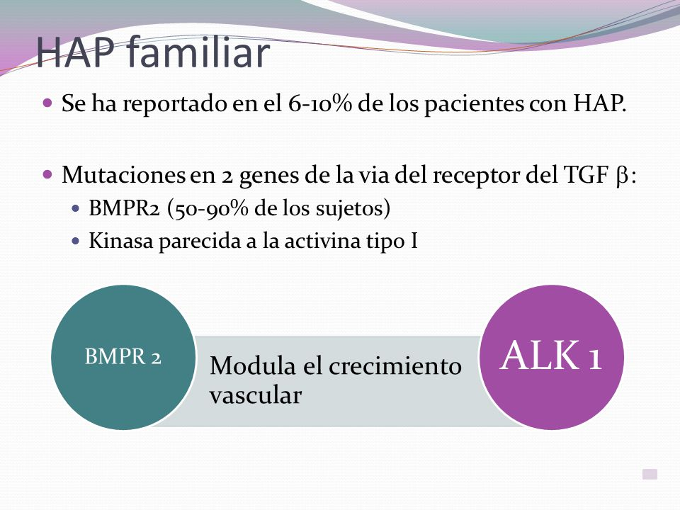 HAP familiar Se ha reportado en el 6-10% de los pacientes con HAP.