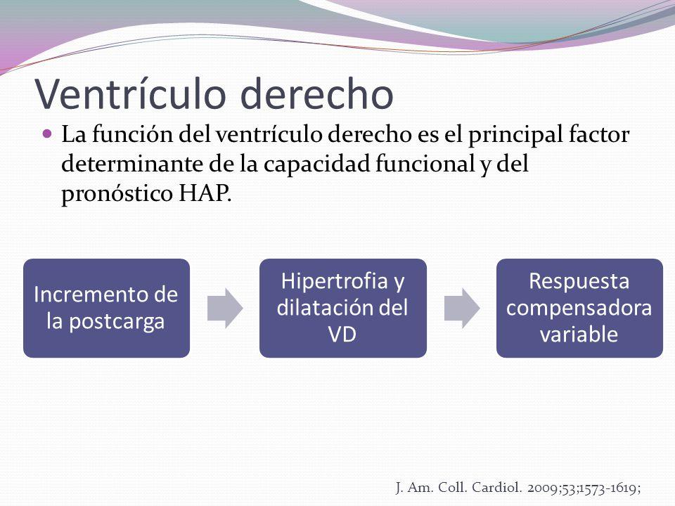 Ventrículo derecho La función del ventrículo derecho es el principal factor determinante de la capacidad funcional y del pronóstico HAP.