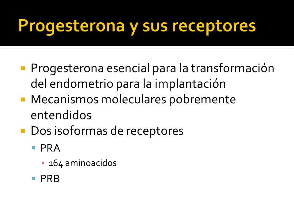 Progesterona esencial para la transformación del endometrio para la implantación Mecanismos moleculares pobremente entendidos Dos isoformas de recepto