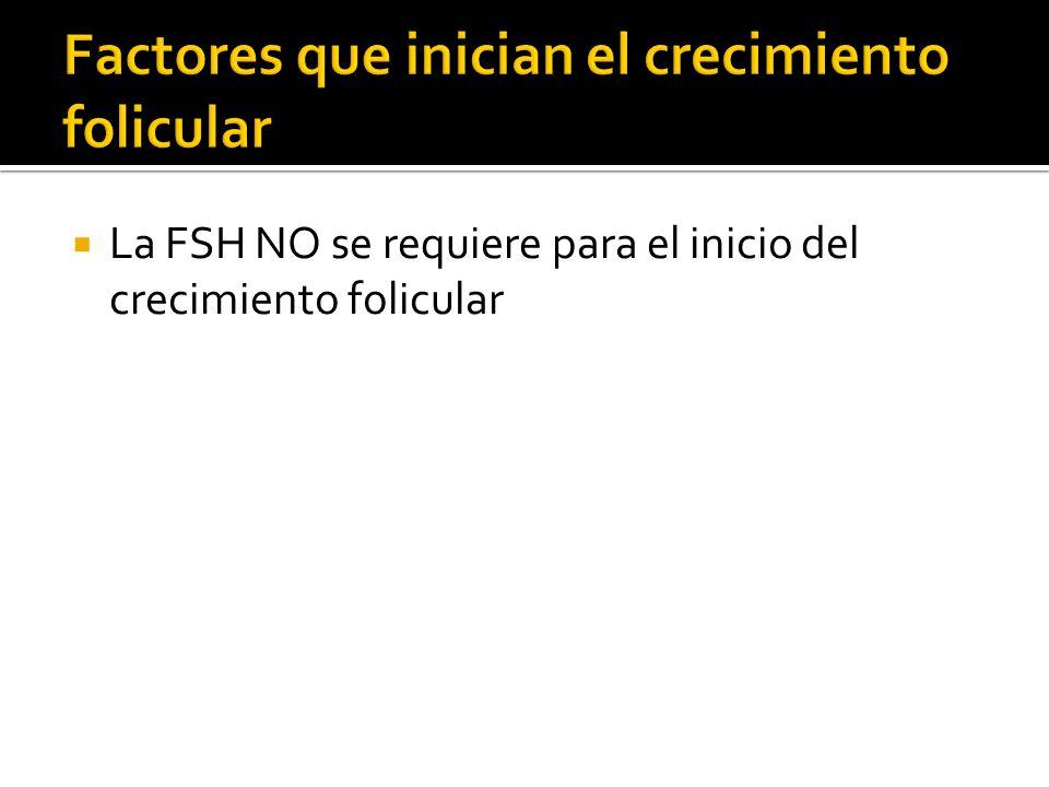 La FSH NO se requiere para el inicio del crecimiento folicular