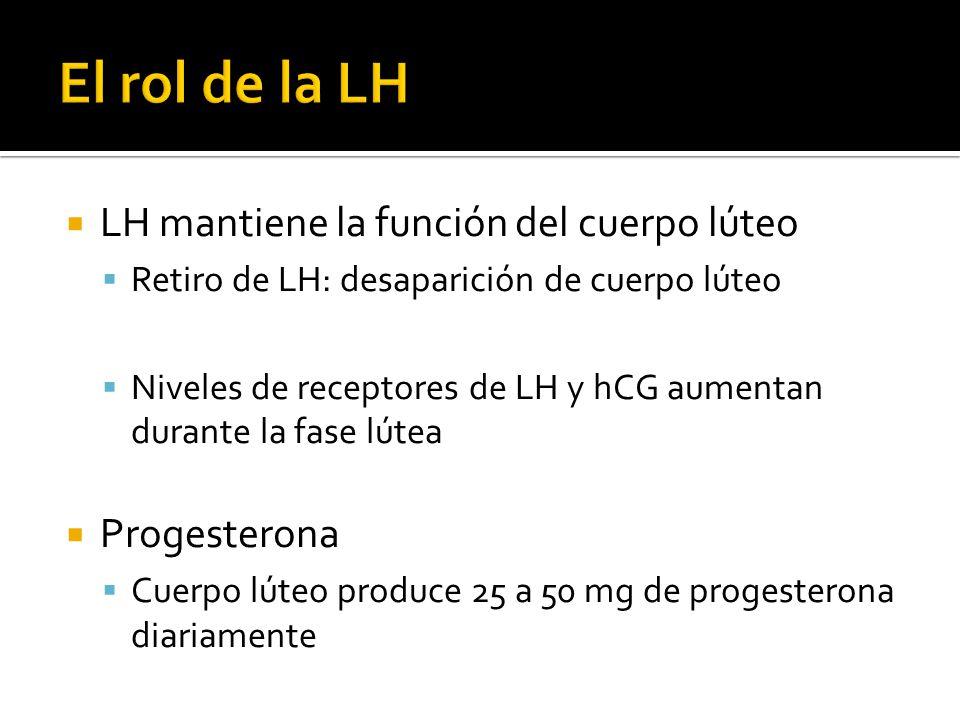 LH mantiene la función del cuerpo lúteo Retiro de LH: desaparición de cuerpo lúteo Niveles de receptores de LH y hCG aumentan durante la fase lútea Pr