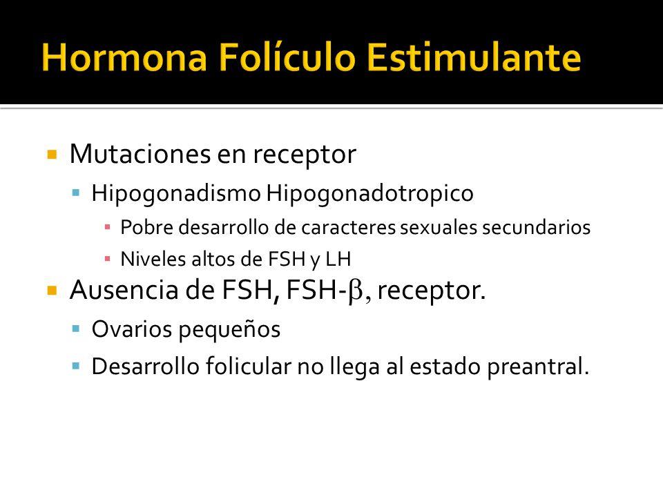 Mutaciones en receptor Hipogonadismo Hipogonadotropico Pobre desarrollo de caracteres sexuales secundarios Niveles altos de FSH y LH Ausencia de FSH,