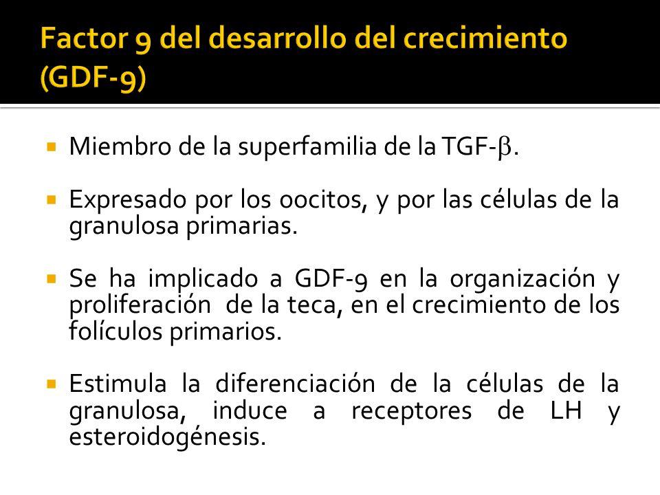 Miembro de la superfamilia de la TGF-. Expresado por los oocitos, y por las células de la granulosa primarias. Se ha implicado a GDF-9 en la organizac