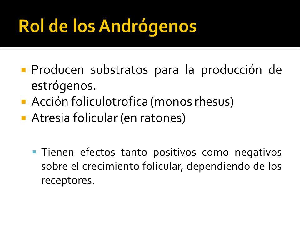 Producen substratos para la producción de estrógenos. Acción foliculotrofica (monos rhesus) Atresia folicular (en ratones) Tienen efectos tanto positi