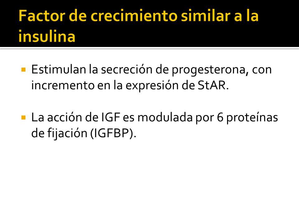 Estimulan la secreción de progesterona, con incremento en la expresión de StAR. La acción de IGF es modulada por 6 proteínas de fijación (IGFBP).