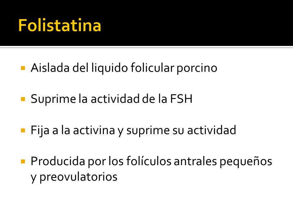 Aislada del liquido folicular porcino Suprime la actividad de la FSH Fija a la activina y suprime su actividad Producida por los folículos antrales pe