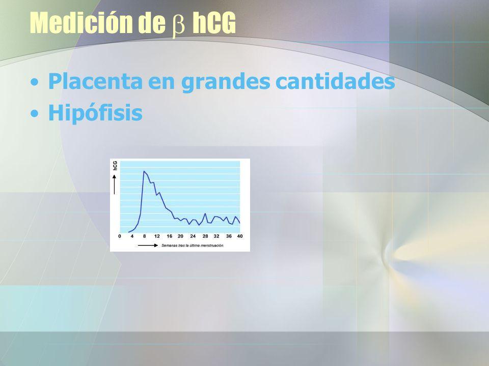 Medición de hCG Placenta en grandes cantidades Hipófisis